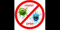 Профилактика, предотвращение осложнений, восстановление при коронавирусной инфекции и других ОРВИ: схемы от Беспалова В.Г.