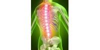 Грыжа позвоночника: чтобы спина не болела