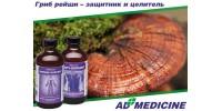 Гриб Рейши (Ganoderma lucidum) - удивительный гриб для укрепления здоровья и сохранения долголетия